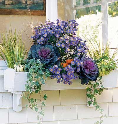 Сандъче с цветя