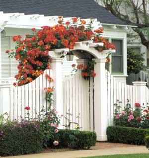 Красива градинска порта